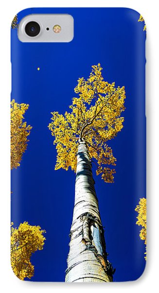 Falling Leaf IPhone Case by Chad Dutson