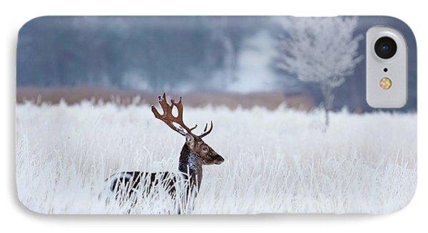Fallow Deer In The Frozen Winter Landscape IPhone Case