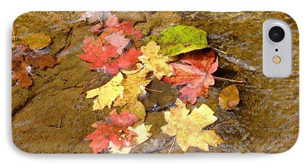 Falls Colors 6349 IPhone Case by En-Chuen Soo