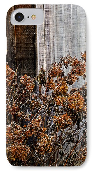 Fall's Fleeting Memories IPhone Case