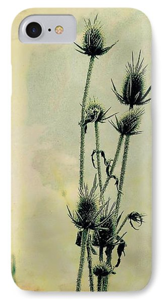 Family Of Teasels IPhone Case