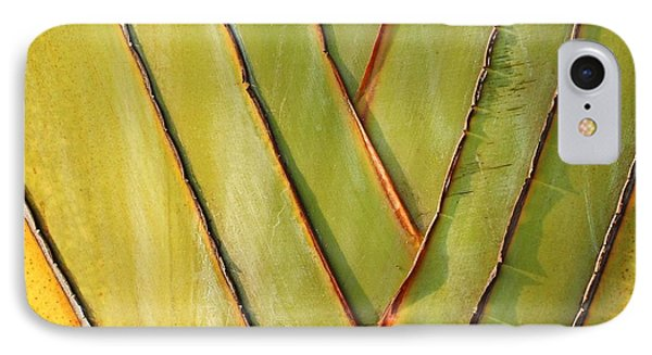 Fan Like Leaves Of The Traveler Palm IPhone Case