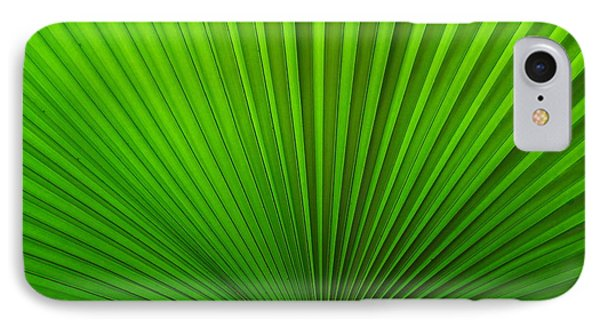 IPhone Case featuring the photograph Fan Palm by Ranjini Kandasamy