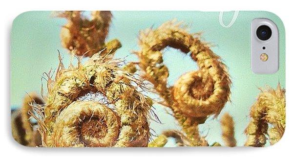 Curly Fern Fronds IPhone Case by Blenda Studio