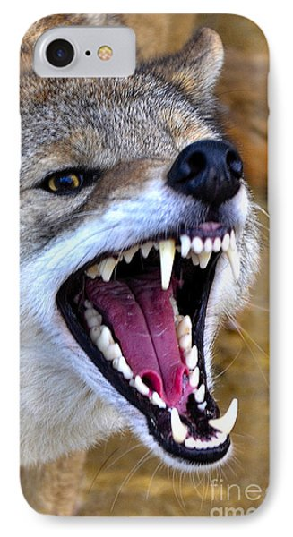 IPhone Case featuring the photograph Fangs by Adam Olsen