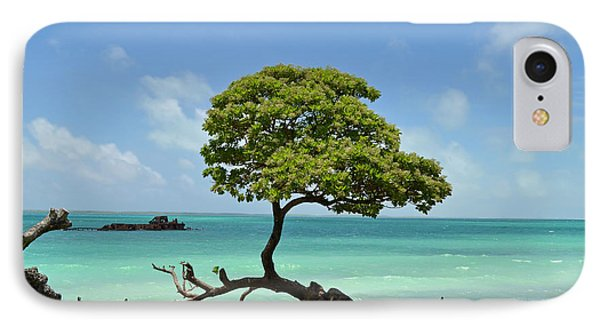 Fanning Tree On Beach IPhone Case by Eva Kaufman