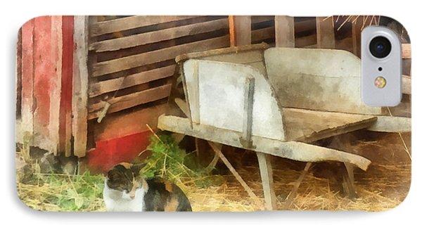 Farm Cat Phone Case by Susan Savad