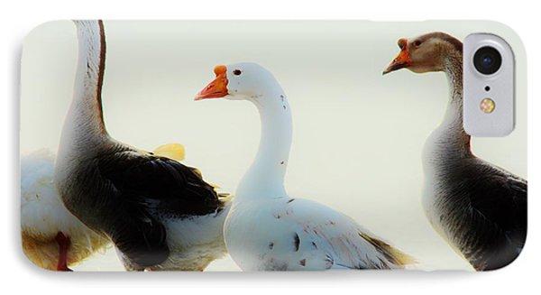 Farm Geese 2 IPhone Case by Lynda Dawson-Youngclaus