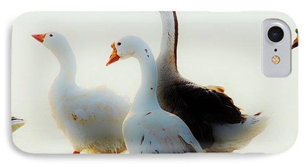 Farm Geese IPhone Case by Lynda Dawson-Youngclaus