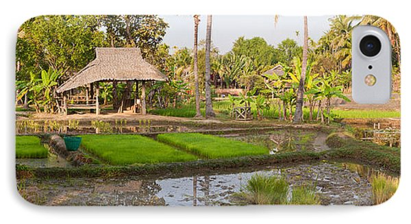Farmer Working In A Rice Field, Chiang IPhone Case by Panoramic Images