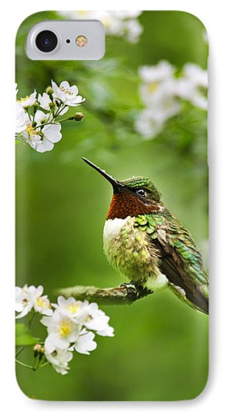 Fauna And Flora - Hummingbird With Flowers IPhone 7 Case by Christina Rollo
