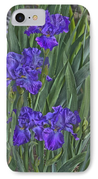 Faux Painted Irises Phone Case by Penny Lisowski
