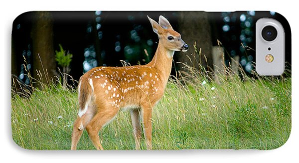 Fawn IPhone 7 Case by Shane Holsclaw