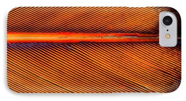 Feather Of A Flicker IPhone Case