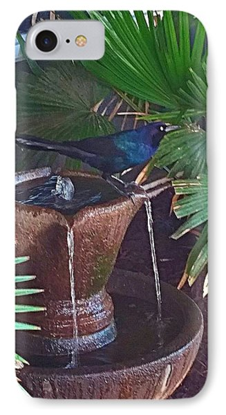 Feathered Fountain  IPhone Case