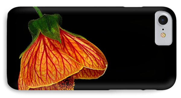 Features Of A Flower IPhone Case by Marwan Khoury