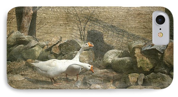 Feeding Geese   IPhone Case by Betty  Pauwels