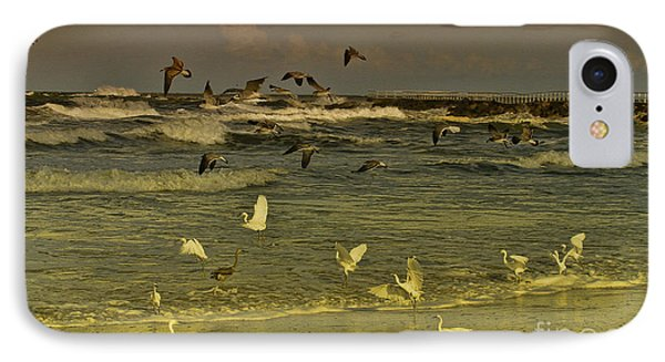 Feeding Frenzy IPhone Case by Deborah Benoit