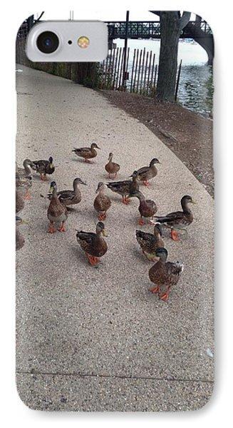 Feeding The Ducks IPhone Case