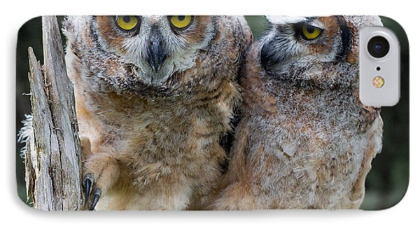 Feeling A Little Grumpy Are We? Phone Case by Barbara McMahon