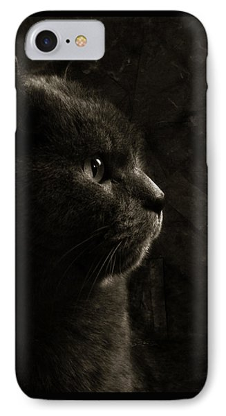 Feline Perfection IPhone Case by Laura Melis