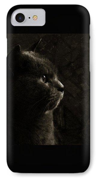 Feline Perfection Phone Case by Laura Melis