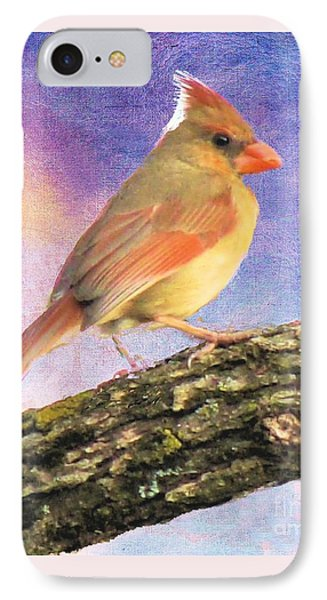Female Cardinal Away From Sun IPhone Case