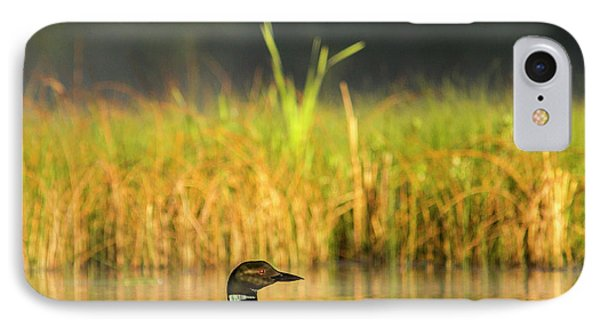 Loon iPhone 7 Case - Female Common Loon With Newborn Chick by Chuck Haney