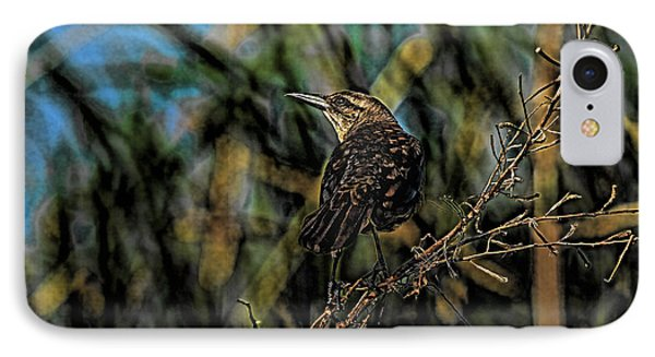 Female Grackle On The Dark Side Phone Case by Deborah Benoit