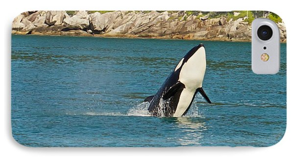 IPhone Case featuring the photograph Female Orca Cheval Island Alaska by Michael Rogers