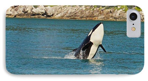 Female Orca Cheval Island Alaska IPhone Case