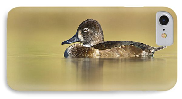 IPhone Case featuring the photograph Female Ring Necked Duck by Bryan Keil