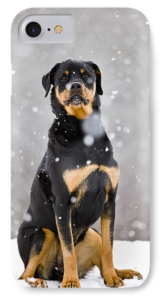 Female Rottweiler Sitting On Top Of A IPhone Case