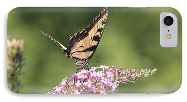 Female Tiger Butterly-1-featured In Macro-comfortable Art And Newbies Groups Phone Case by EricaMaxine  Price