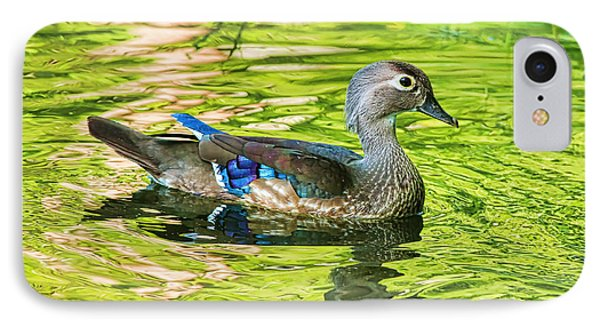 Female Wood Duck Phone Case by Deborah Benoit
