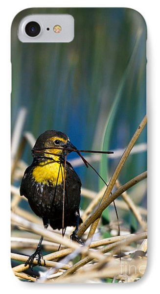 Blackbird Builds A Nest IPhone Case by Martha Marks