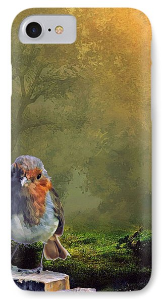 Fence Sitting IPhone Case by Tyler Robbins