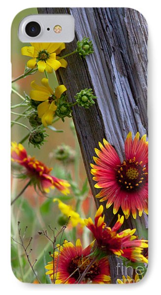 Fenceline Wildflowers IPhone Case