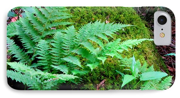 Fern And Moss IPhone Case