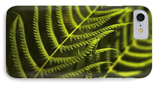 IPhone Case featuring the photograph Fern by Bradley R Youngberg