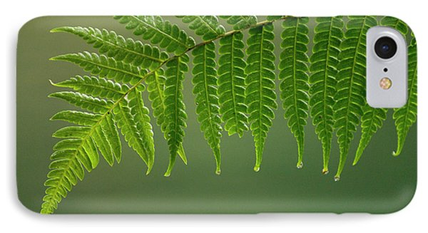 Fern Frond With Drip Tips IPhone Case