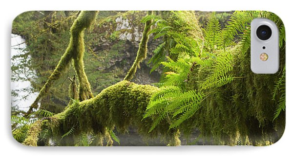 Ferns And Moss Growing On A Tree Limb IPhone Case by William Sutton