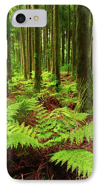Ferns In The Forest Phone Case by Gaspar Avila