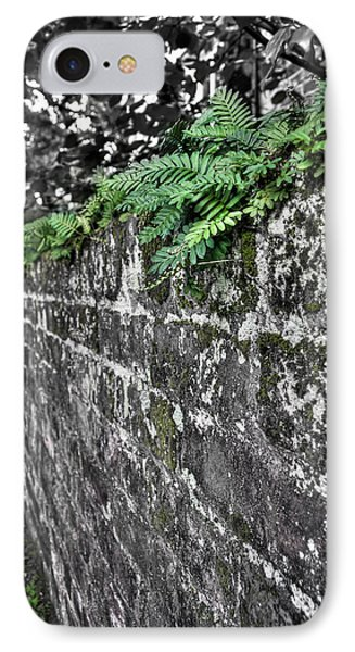 Ferns On Old Brick Wall IPhone Case