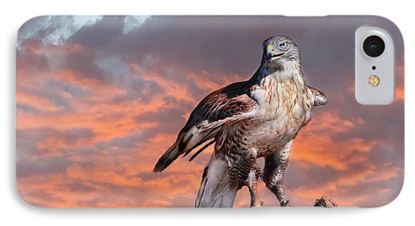 Ferruginous Hawk IPhone Case