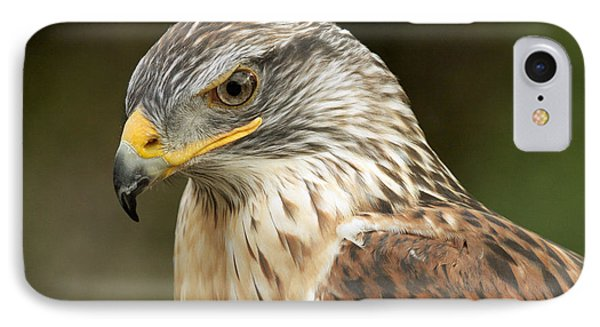 IPhone Case featuring the photograph Ferruginous Hawk by Doug Herr