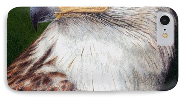 Ferruginous Hawk IPhone Case by Pat Erickson