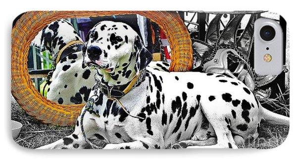 Festival Dog IPhone Case by Blair Stuart