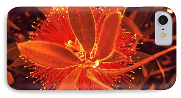 Fiber Optic Flower IPhone Case