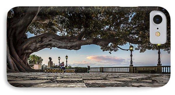 Ficus Magnonioide In The Alameda De Apodaca Cadiz Spain IPhone Case by Pablo Avanzini